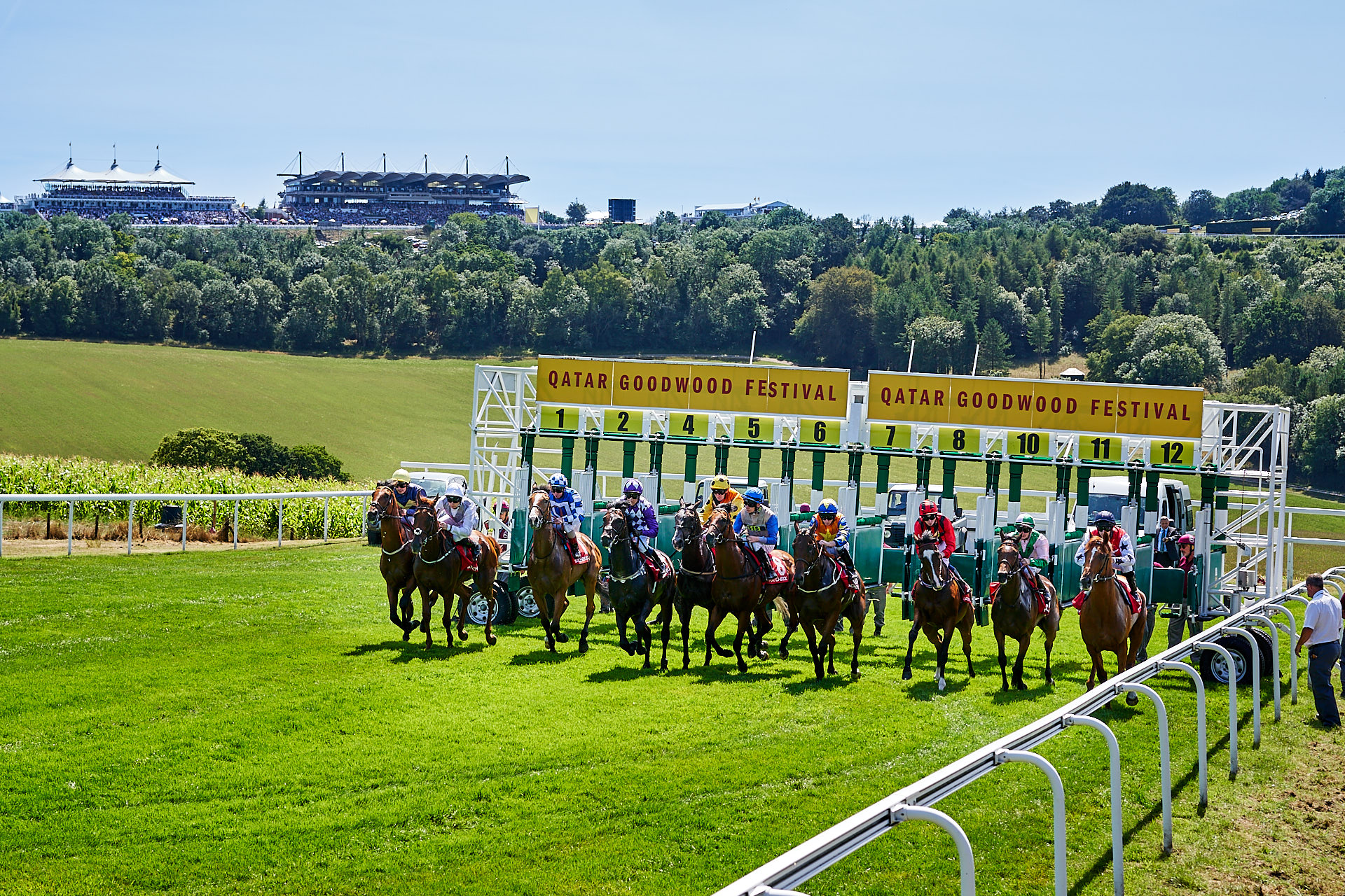 Start of the race at Qatar Goodwood Festival 2018