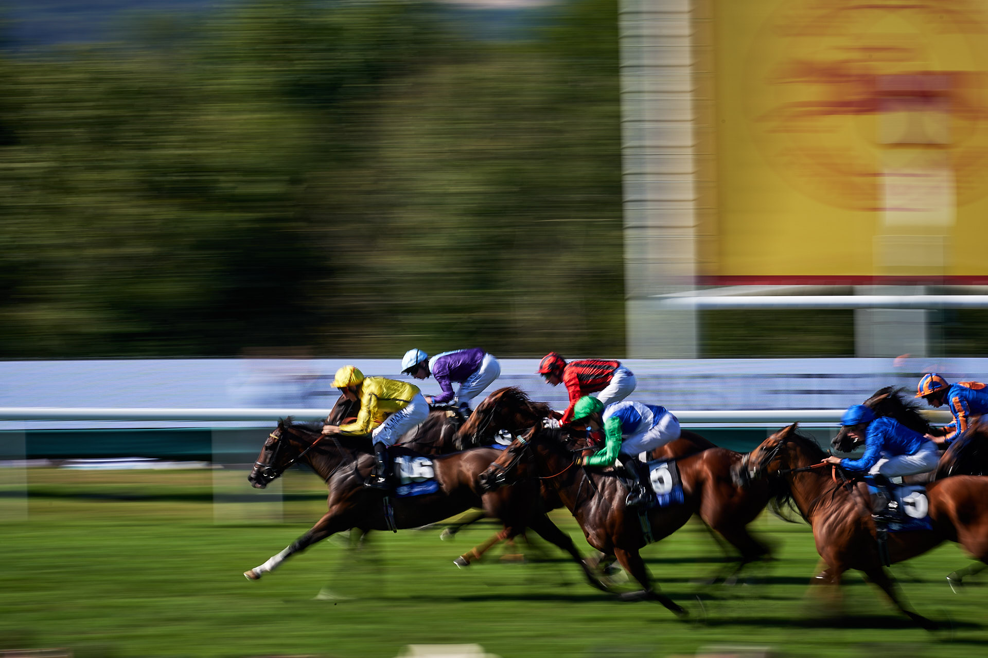 Motion slow pan shot at the finish of the Qatar Goodwood Festival 2018