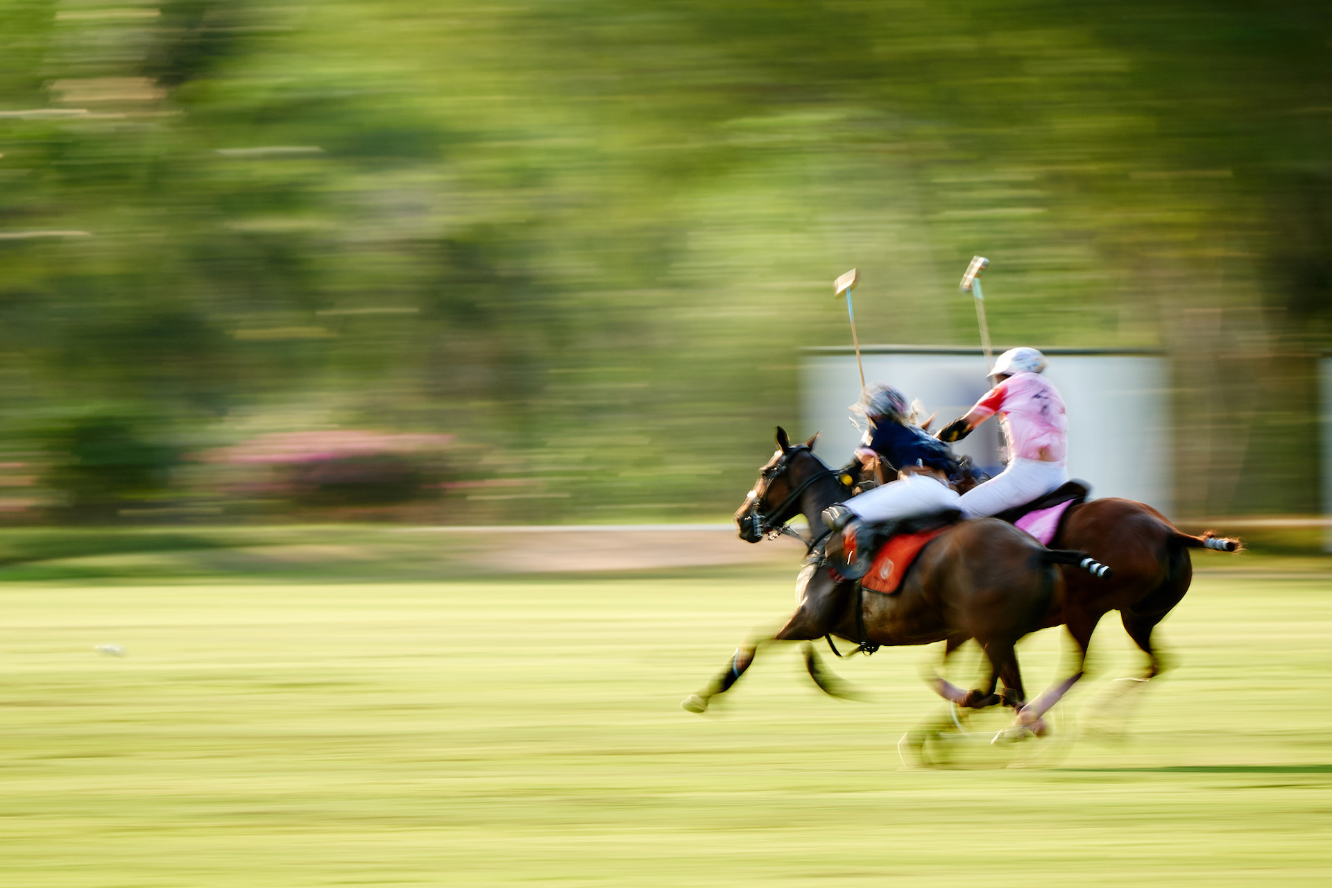 THAI-PINK-POLO-2019-FINALS_DJ_8580